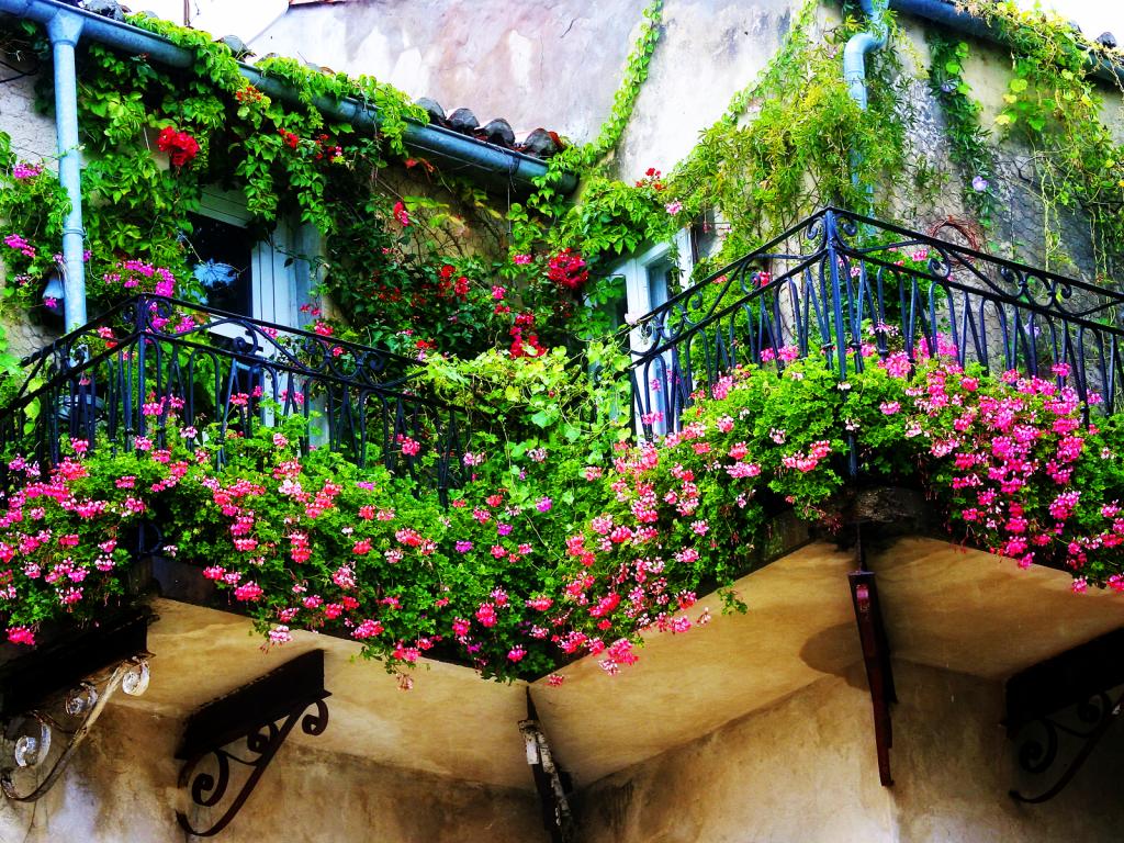 innaffiare le piante durante le vacanze balcone